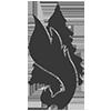 waldbrand logo siebdruck grafik design textildruck posterdruck plakatdruck