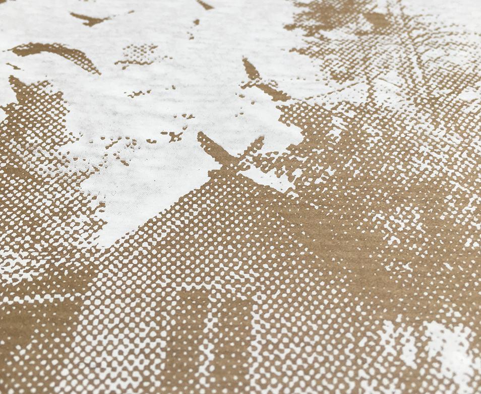 baraque, bruchbude, heesacker house, Siebdruck, Poster, Grafik, design, Vögel, federn, Natur,