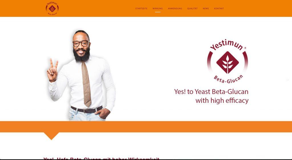 Responsive Webdesign mit WordPress CMS für Yestimun®